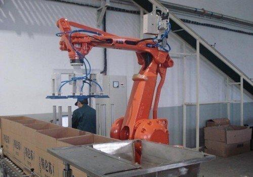 使用码垛机器人包装设备的十个优势(二)